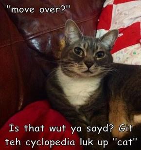 """move over?""   Is that wut ya sayd? Git teh cyclopedia luk up ""cat"""