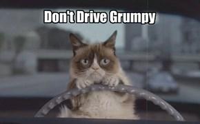 Grumpycat Day