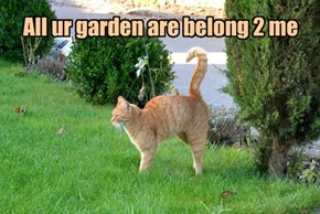 All ur garden are belong 2 me
