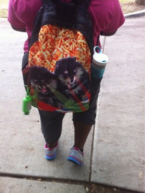 Clearly, This is What the Backpack Was Intended to Contain
