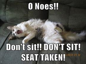 O Noes!!  Don't sit!! DON'T SIT! SEAT TAKEN!