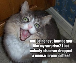 Ha!  Be honest, how do you like my surprise? I bet nobody else ever dropped a mouse in your coffee!