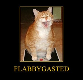 FLABBYGASTED