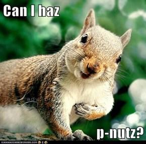 Can I haz  p-nutz?