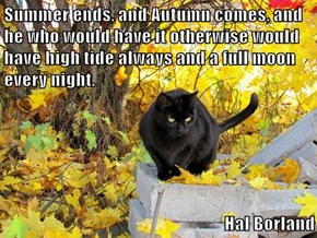 Summer ends, and Autumn comes, and he who would have it otherwise would have high tide always and a full moon every night.   Hal Borland