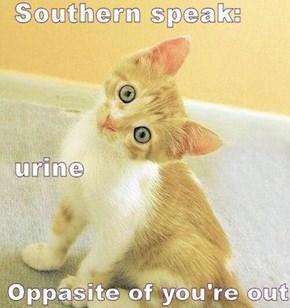 NCcharmer - Southern Speak - Oldies but Goodies