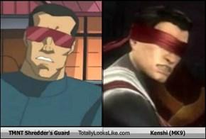 TMNT Shredder's Guard Totally Looks Like Kenshi (MK9)