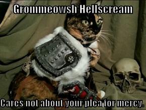 Warcats of Draenor