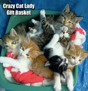 Crazy Cat Lady Gift Basket