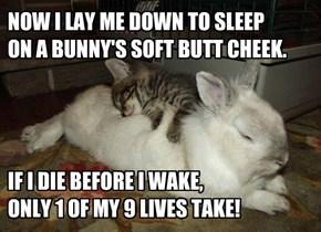 Rest Easy Little Kitteh