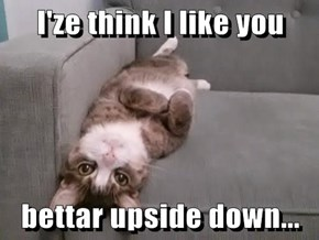 I'ze think I like you  bettar upside down...