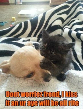 Dont worriez frend, I kiss  it an ur aye will be all rite