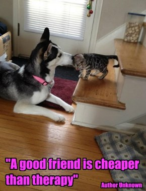 """""""A good friend is cheaper than therapy"""""""