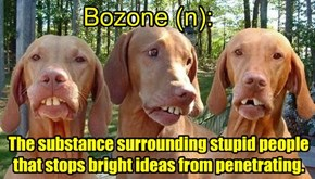 Add a letter & make a new word- Bozone