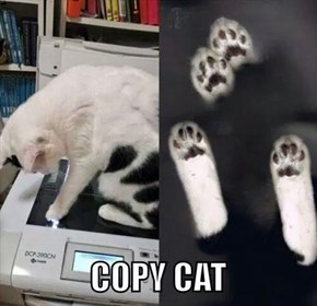 Photocopier CAT