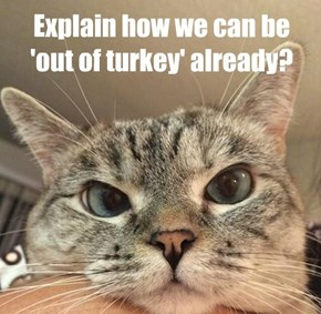 Explain how we can be 'out of turkey' already?