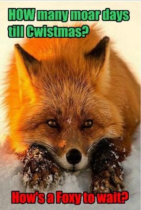 Foxy Wants Presents an' Fudz an' moar Gifts an' Bling-Bling... an' HOW many moar days?