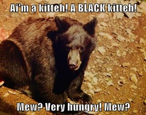 Ai'm a kitteh! A BLACK kitteh!  Mew? Very hungry! Mew?