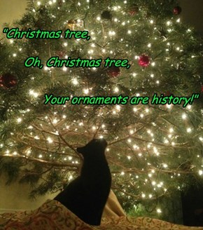 Creative Cat's Christmas Carol...