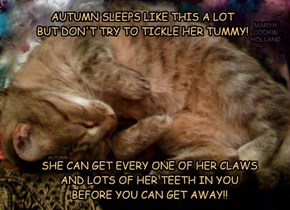 AUTUMN SLEEPS LIKE THIS A LOT BUT DON'T TRY TO TICKLE HER TUMMY!