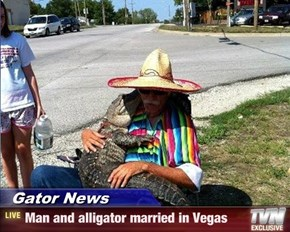 Gator News - Man and alligator married in Vegas