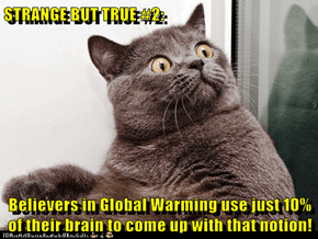 STRANGE BUT TRUE #2:  Believers in Global Warming use just 10% of their brain to come up with that notion!