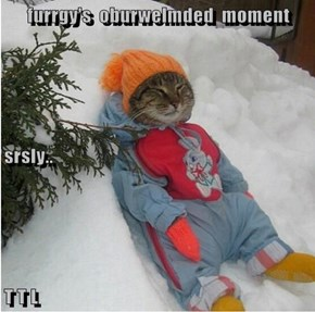 furrgy's  oburwelmded  moment srsly.. T T L
