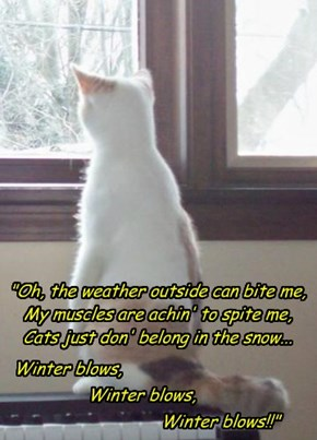 Creative Cat's Christmas Carol... part 2