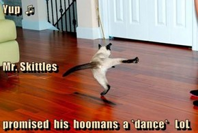 Yup  ♫ Mr. Skittles promised  his  hoomans  a *dance*   LoL