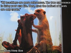 """""""All teachings are mere references. The true experience is living your own life. Then, even the holiest of words are only words.""""   ― Deng Ming-Dao"""