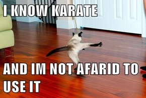 I KNOW KARATE  AND IM NOT AFARID TO USE IT
