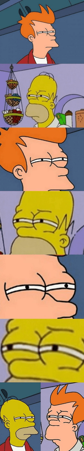 Can't Tell If Fry or Homer