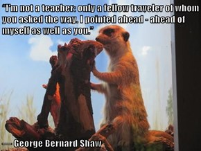 """""""I'm not a teacher: only a fellow traveler of whom you asked the way. I pointed ahead - ahead of myself as well as you.""""   ― George Bernard Shaw"""