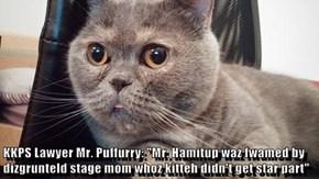 "KKPS Lawyer Mr. Puffurry: ""Mr. Hamitup waz fwamed by dizgrunteld stage mom whoz kitteh didn't get star part"""