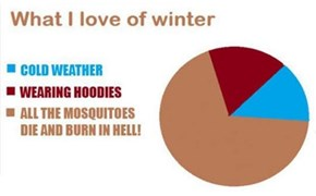 That Pretty Much Sums It Up