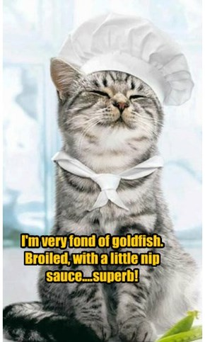 I'm very fond of goldfish. Broiled, with a little nip sauce....superb!