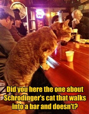 Did you here the one about Schrodinger's cat that walks into a bar and doesn't?