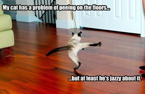 My cat has a problem of peeing on the floors...