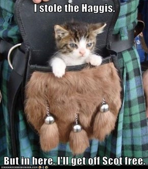 I stole the Haggis.  But in here, I'll get off Scot free.