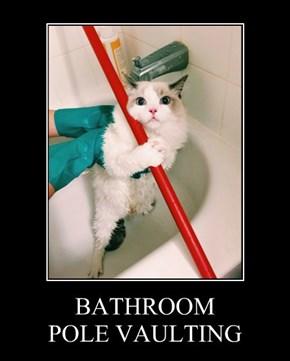 BATHROOM  POLE VAULTING