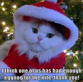 I think one of us has had enough eggnog for the nite, thank you!