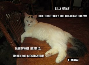 SILLY MAMA !    HER FORGOTTED 2 TELL U MAH LAST NAYM!