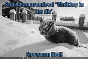 """Snowman promised """"Walking in the Air'.  Snowman lied!"""