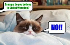 An intelligent kittie speaks out!