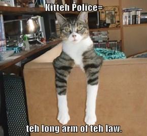 Kitteh Police=  teh long arm of teh law.