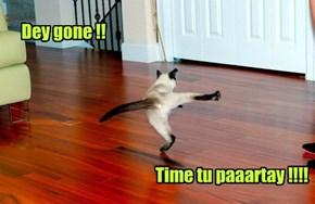 Dey gone !!