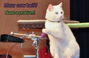 But how bowts we callz it a cat bell?