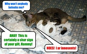 While in jail, a perplexed Mr. Hamitup takes out hiz frustrashuns on an unsuspecting toilet roll! An' den teh sheriff comes upon teh alarming scene!
