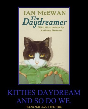 KITTIES DAYDREAM AND SO DO WE.