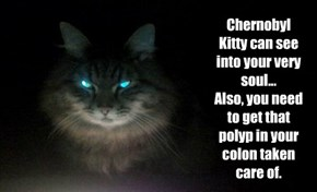 Chernobyl Kitty